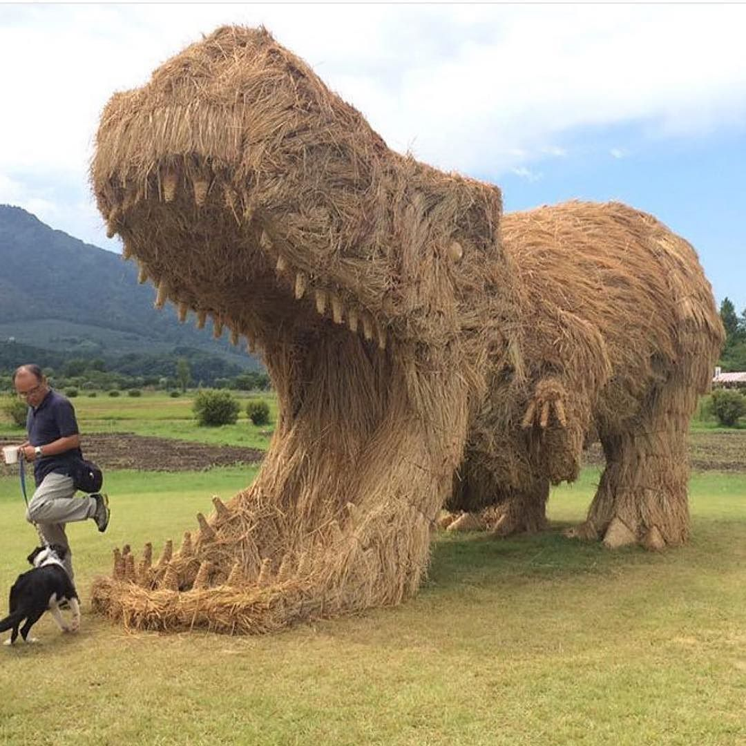 regram @arts_help Awesome  Japanese Artist Amy Goda made this giant #TRex out of harvested rice straws _ Via @boredpanda  _ Also check out our new art featuring page @artshelp