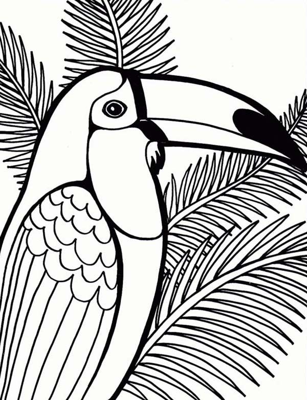 parrot on coconut tree coloring page mosaic templates - Parrot Pictures To Color