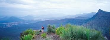 Image result for gold coast hinterland