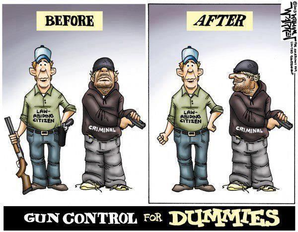 More Gun Control for Dummies
