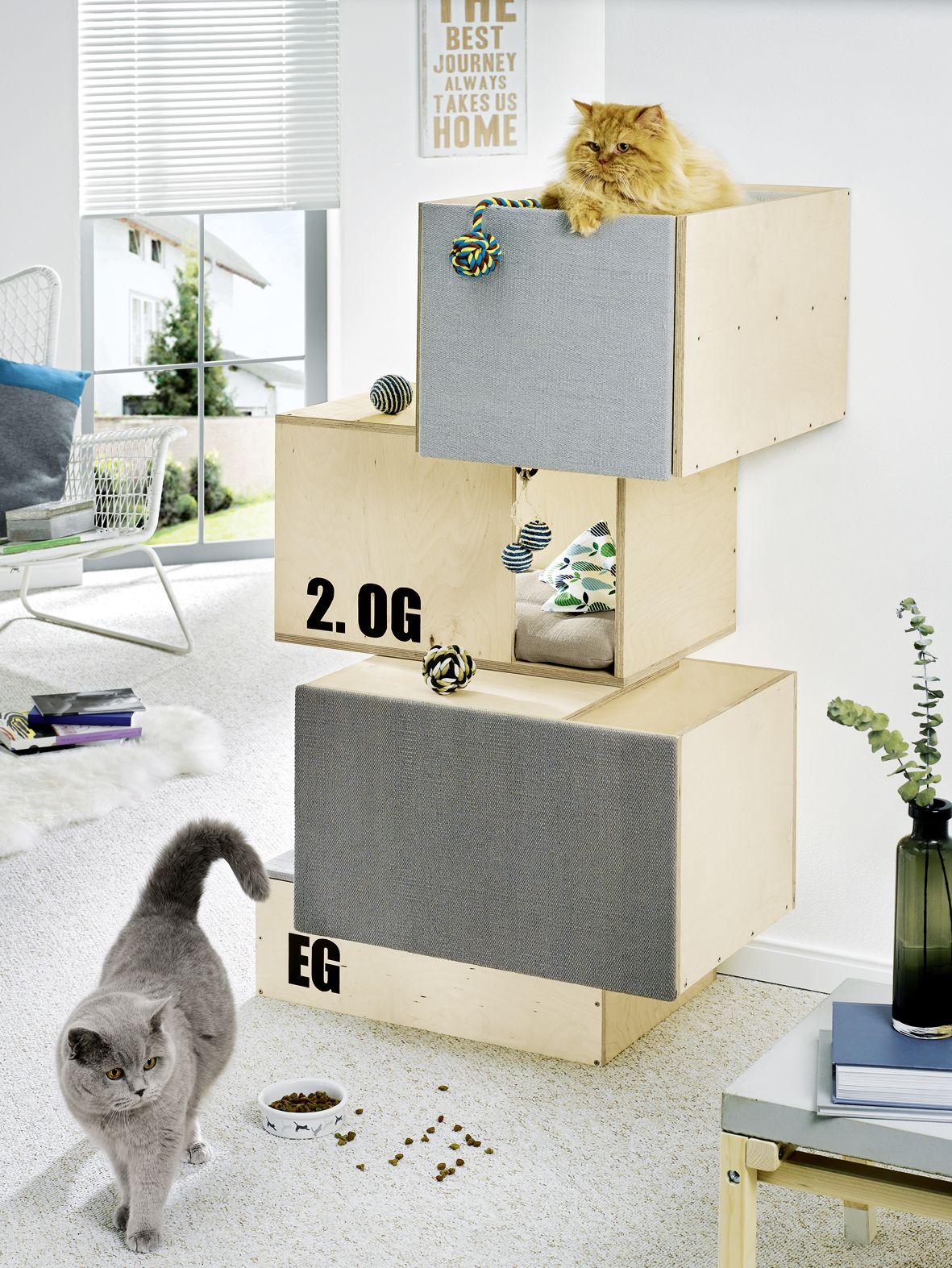 katzenm bel kubus h hle hier geht 39 s zur anleitung. Black Bedroom Furniture Sets. Home Design Ideas