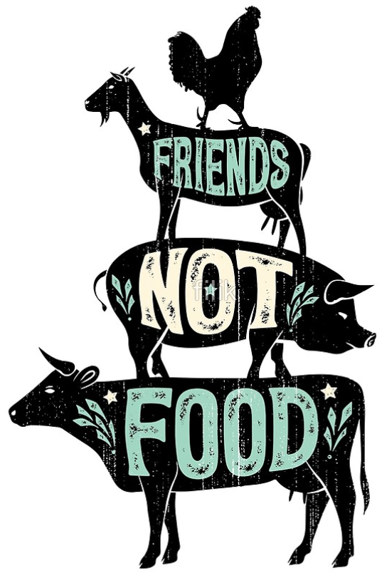 VEGAN - FRIENDS NOT FOOD - IRON ON T-SHIRT TRANSFER Vegetarian #veganquotes