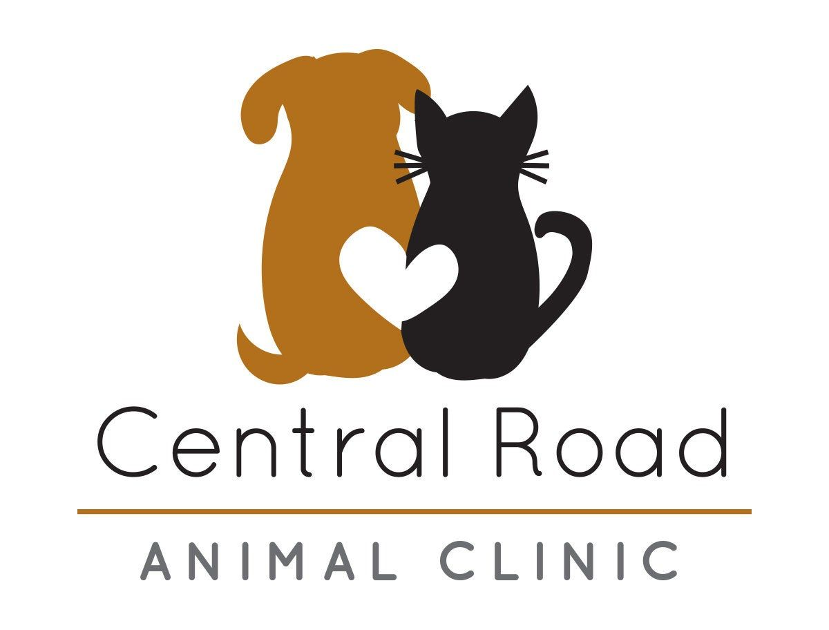 Dog And Cat Logo Instant Download Dog And Cat With Heart Etsy