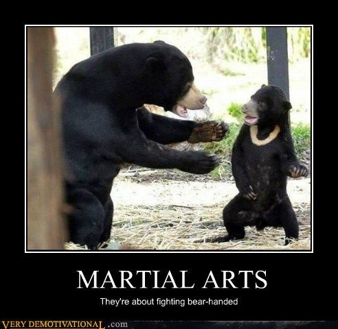pin by james boothe on monkey faces pinterest martial