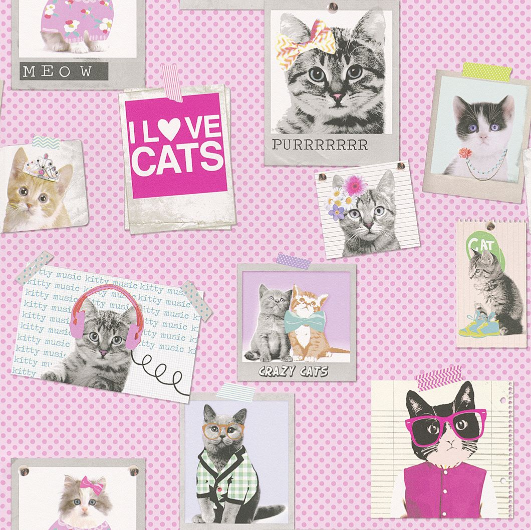 Cat's Life by Albany Wallpaper Direct Pink girls