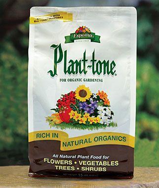A greate Bonsai fertilizer is Espoma Plant Tone Organic Fertilizer