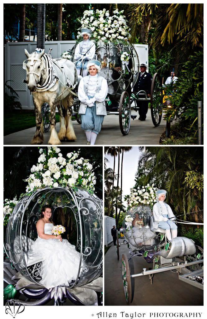 Wedding Spotlight Tasha Jonathan Magical Day Weddings