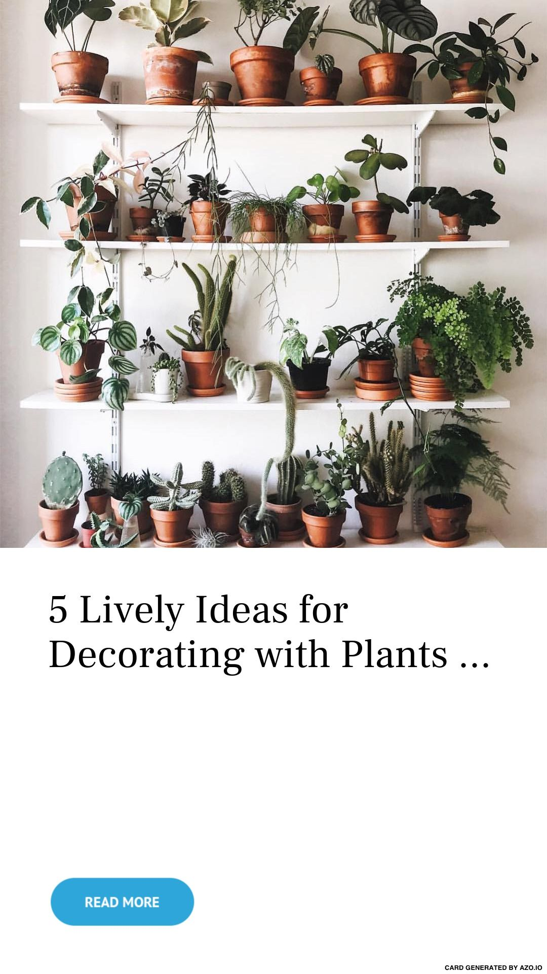 5 Lively Ideas For Decorating With Plants