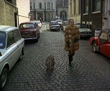 Kensington secretary, Angela McWilliams takes her pet leopard, Michael, for a stroll through the streets of 1960s swinging London.