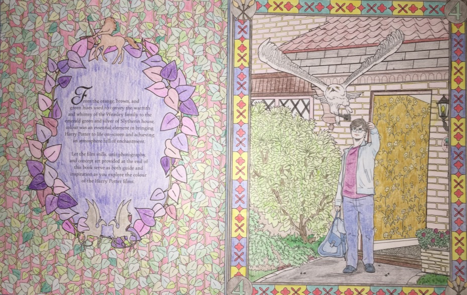 Harry Potter And Hedwig At 4 Privet Drive Little Whinging Surrey United Kingdom Harry Potter Coloring Book Coloring Books Painting