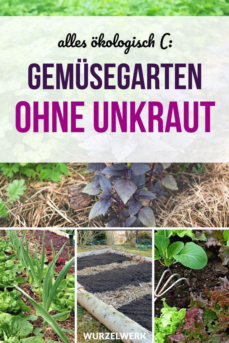 garten anlegen #garden #garten Unkrautfrei grtnern Jaa dasjenige geht Du bist st… – Modern