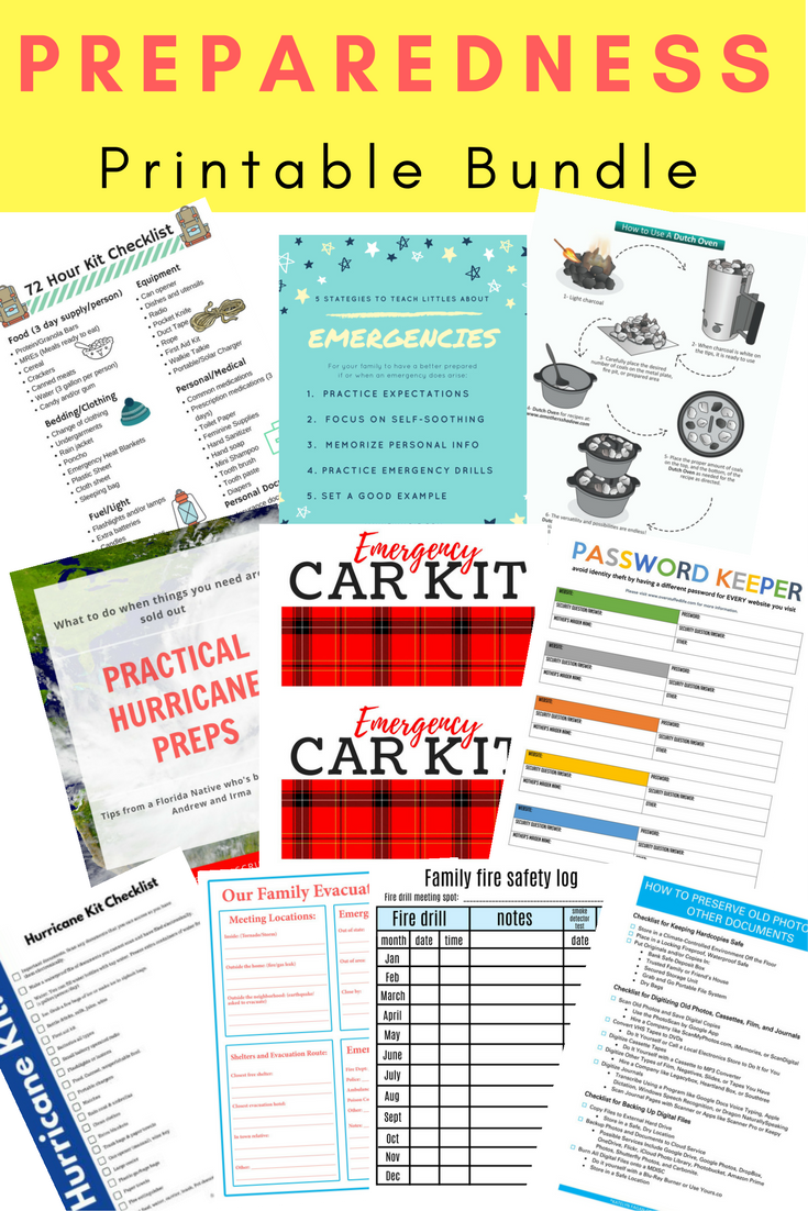 Download This Free Preparedness Printable Bundle And Be Prepared For The Disasters That May Come Your Way With Images Family Emergency Preparedness How To Memorize Things