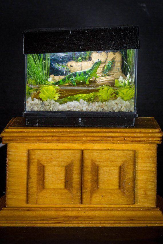 Dollhouse Miniature Reptile Terrarium Lizard Tank Aquarium with Electric Mini Plug In Lighted Dollhouse Miniature Reptile Terrarium Lizard Tank Aquarium with Electric Min...