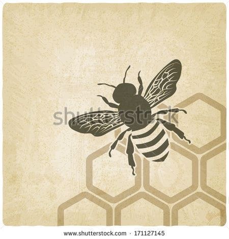 bee old background - vector illustration - stock vector | Health ...