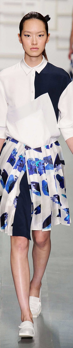J. JS Lee Collection Spring 2015 Ready-to-Wear