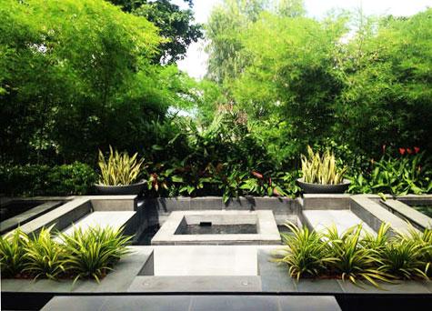 Modern Tropical Gardens In Bangkok Tropical Garden Design Tropical Garden Plants Tropical Garden