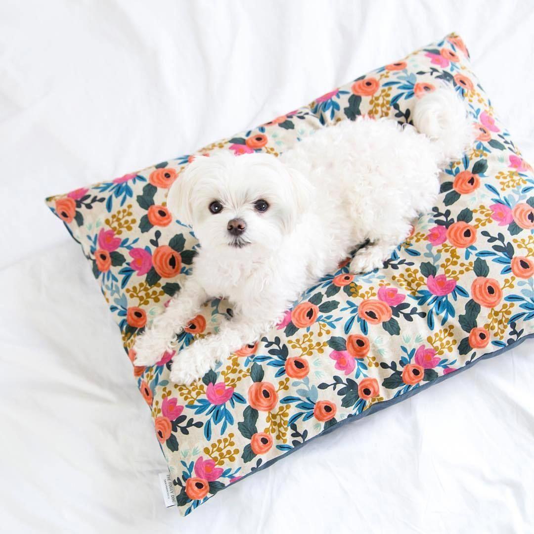 ROSA FLORAL DOG BED Dogsupplies Dog bed, Covered dog