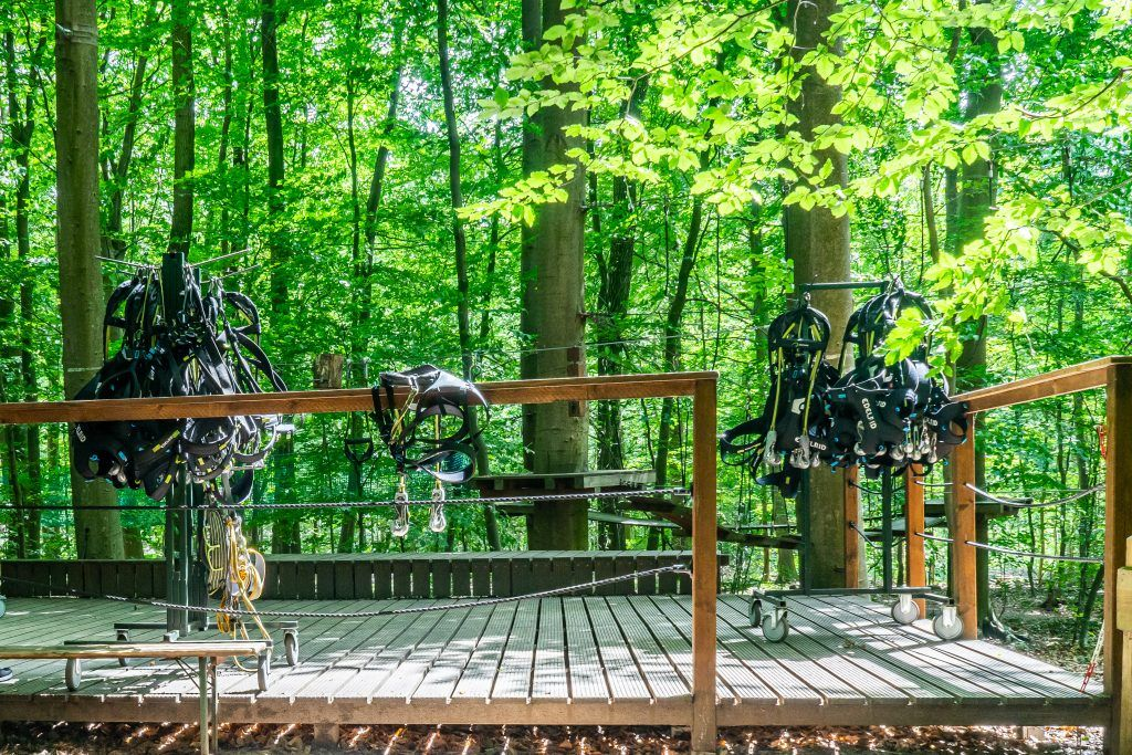 Hoch hinaus! Waldhochseilgarten Scharbeutz • Home