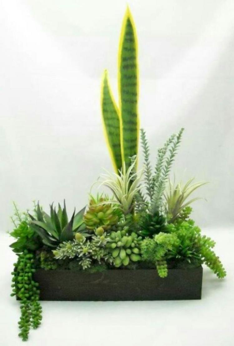 Enchanting DIY Indoor Succulent Garden Ideas   Garden   Pinterest ...