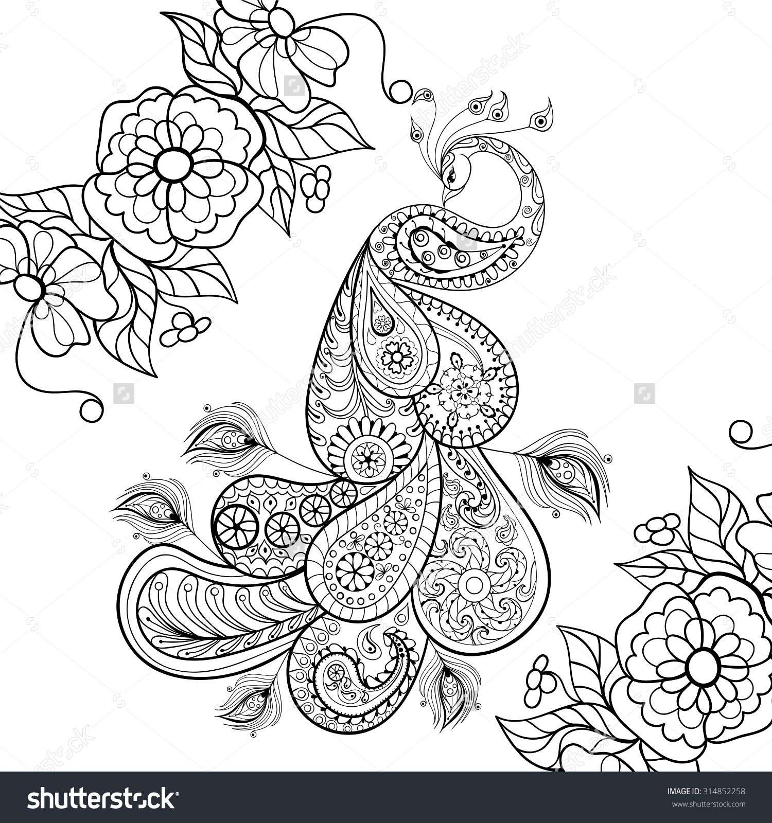 image result for peacock animal adult colouring - Art Therapy Coloring Pages Animals