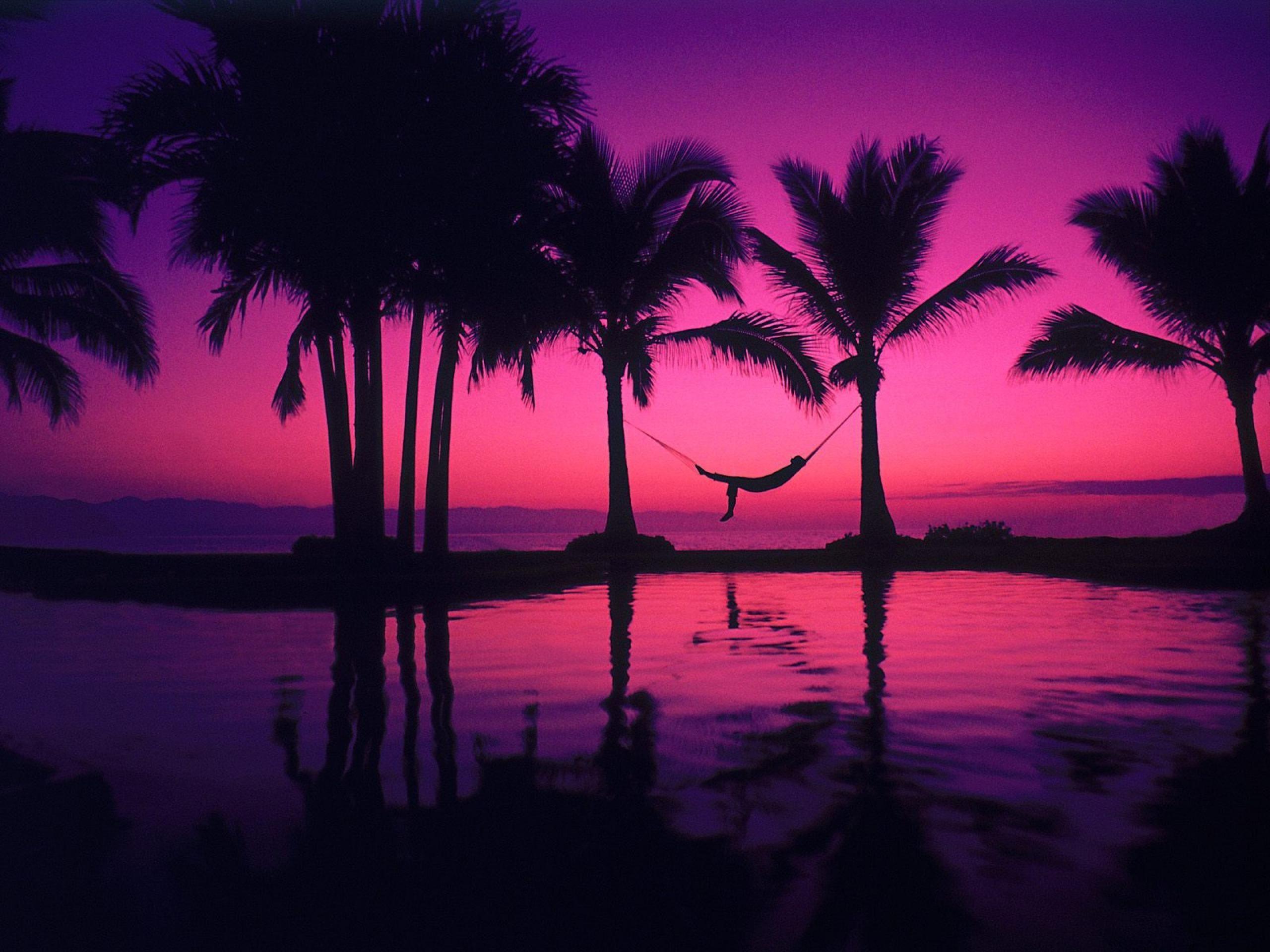Sunset Hawaii Beach Purple With Hammock Wallpaper