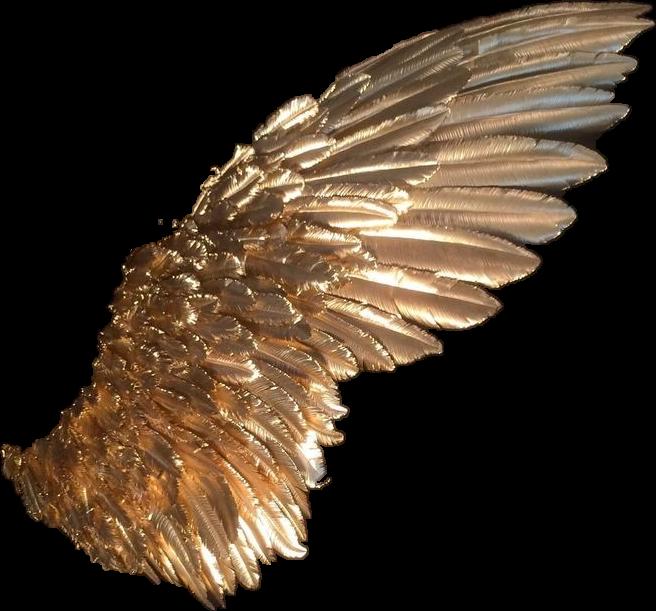 #angel #aesthetic #tumblr #angelwings #wings #freetoedit