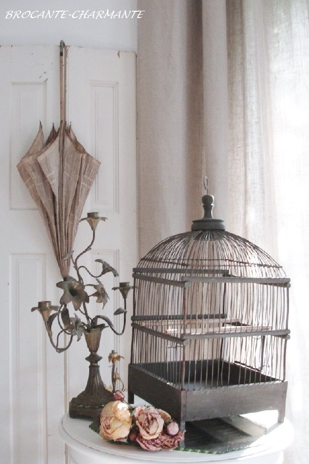 antique bird cage brocante charmante at home brocante charmante pinterest bird cages. Black Bedroom Furniture Sets. Home Design Ideas