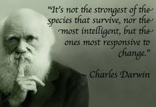 "survival of the fittest darwin essays ""survival of the fittest"" just might as well be the title of this short story only the strongest will survive is charles darwin's theory."