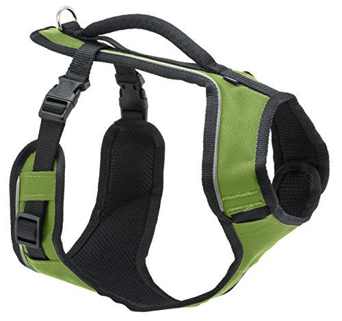 PetSafe Large Sure Fit Harness 1 Apple Green *** Details
