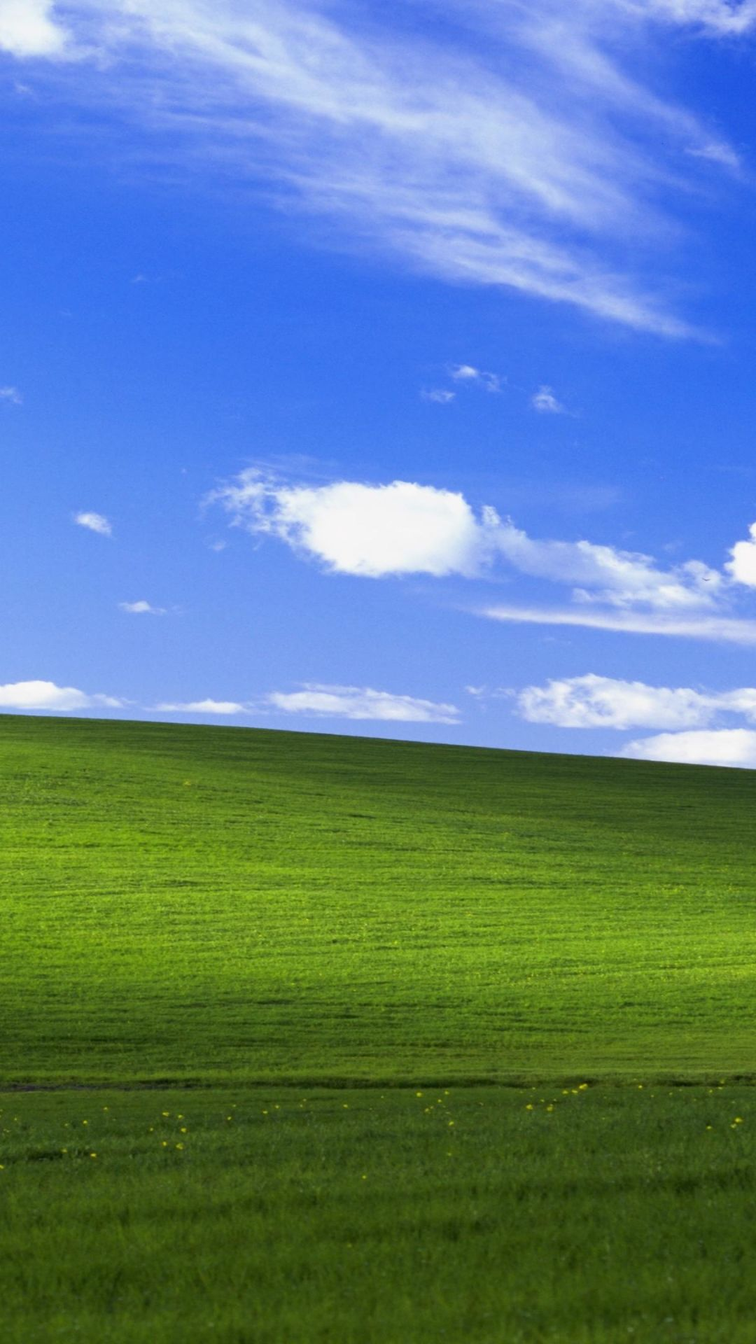Dank Windows Xp Background Picture In 2020 Microsoft Wallpaper Background Pictures Android Wallpaper