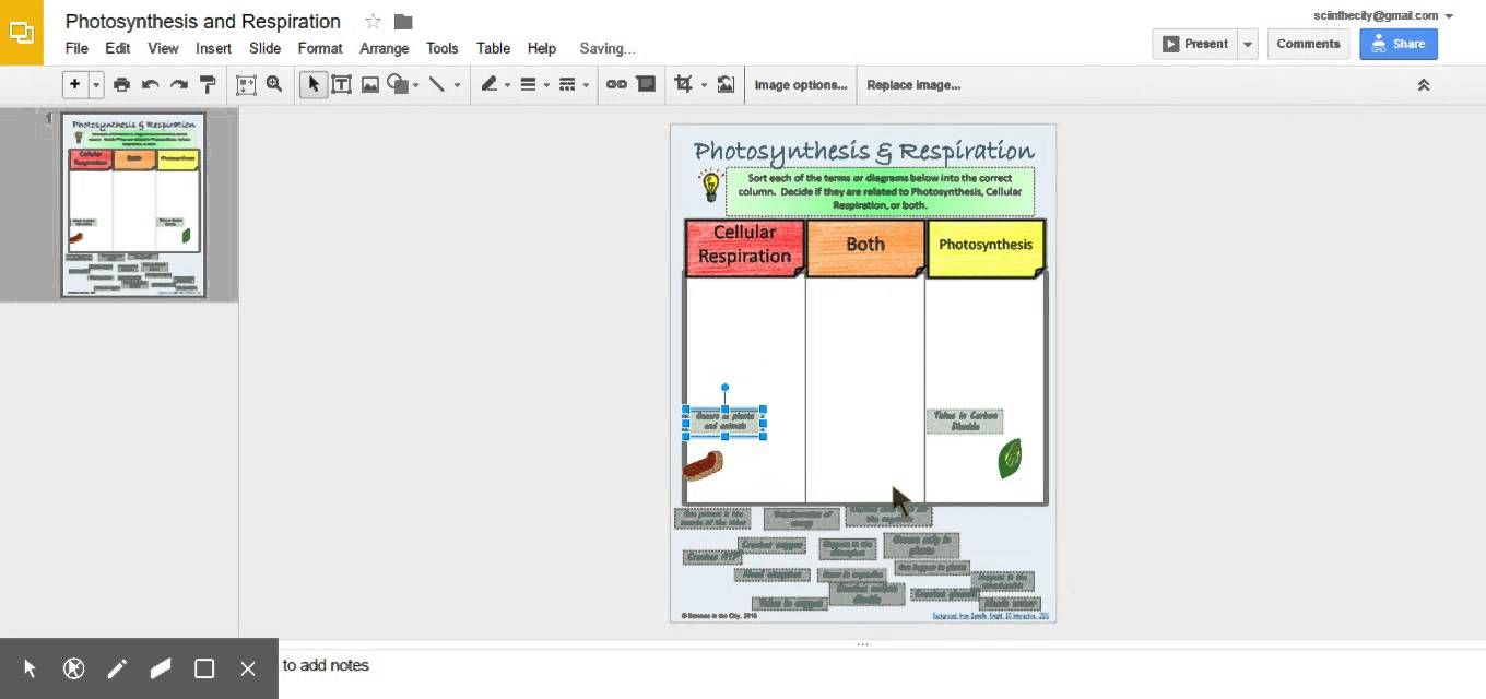 Photosynthesis And Respiration Sort Preview Secondary Science Classroom Biology Classroom Biology Resources [ 640 x 1360 Pixel ]