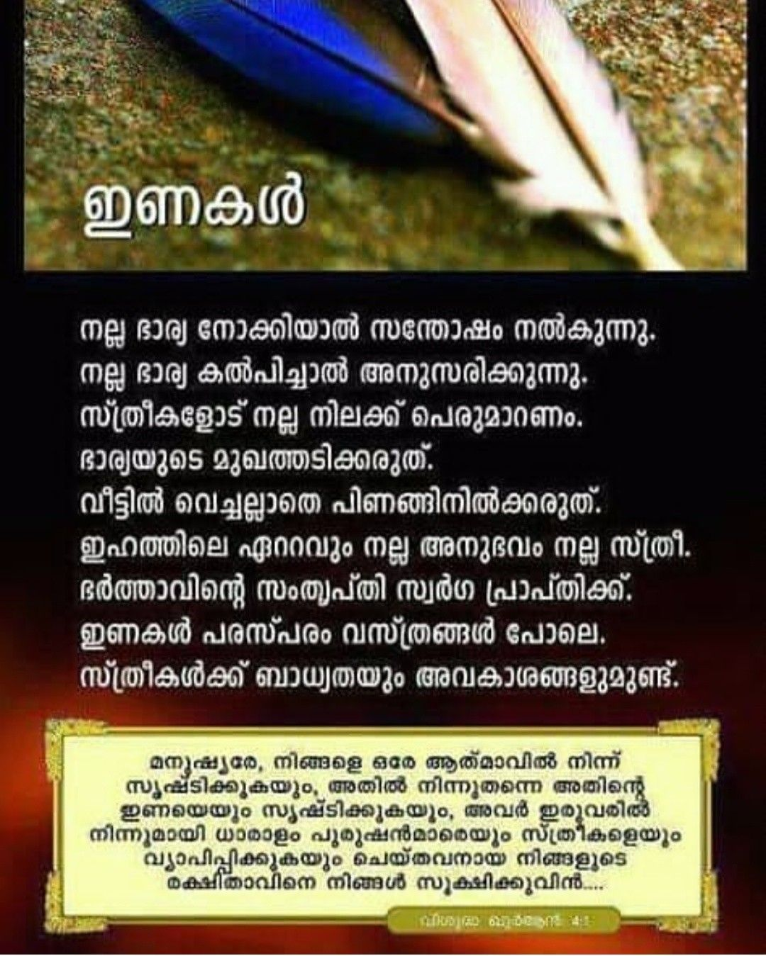Pin By محمد نوفل بن شرف الدين كونجو On മലയ ള Marriage Quotes Malayalam Quotes Quotes