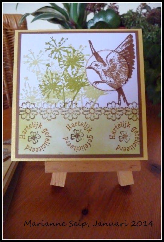 Voor onze dochter Jessica deze kaart gemaakt. Zij is vandaag jarig. Ik heb de kaart gedeeltelijk gemaskerd, gesponsd met Distress inkt. D...