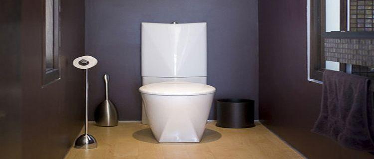 Peinture wc id es couleur pour des wc top d co deco wc - Peinture wc original ...