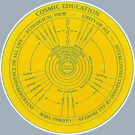 Montessori cosmic education essay
