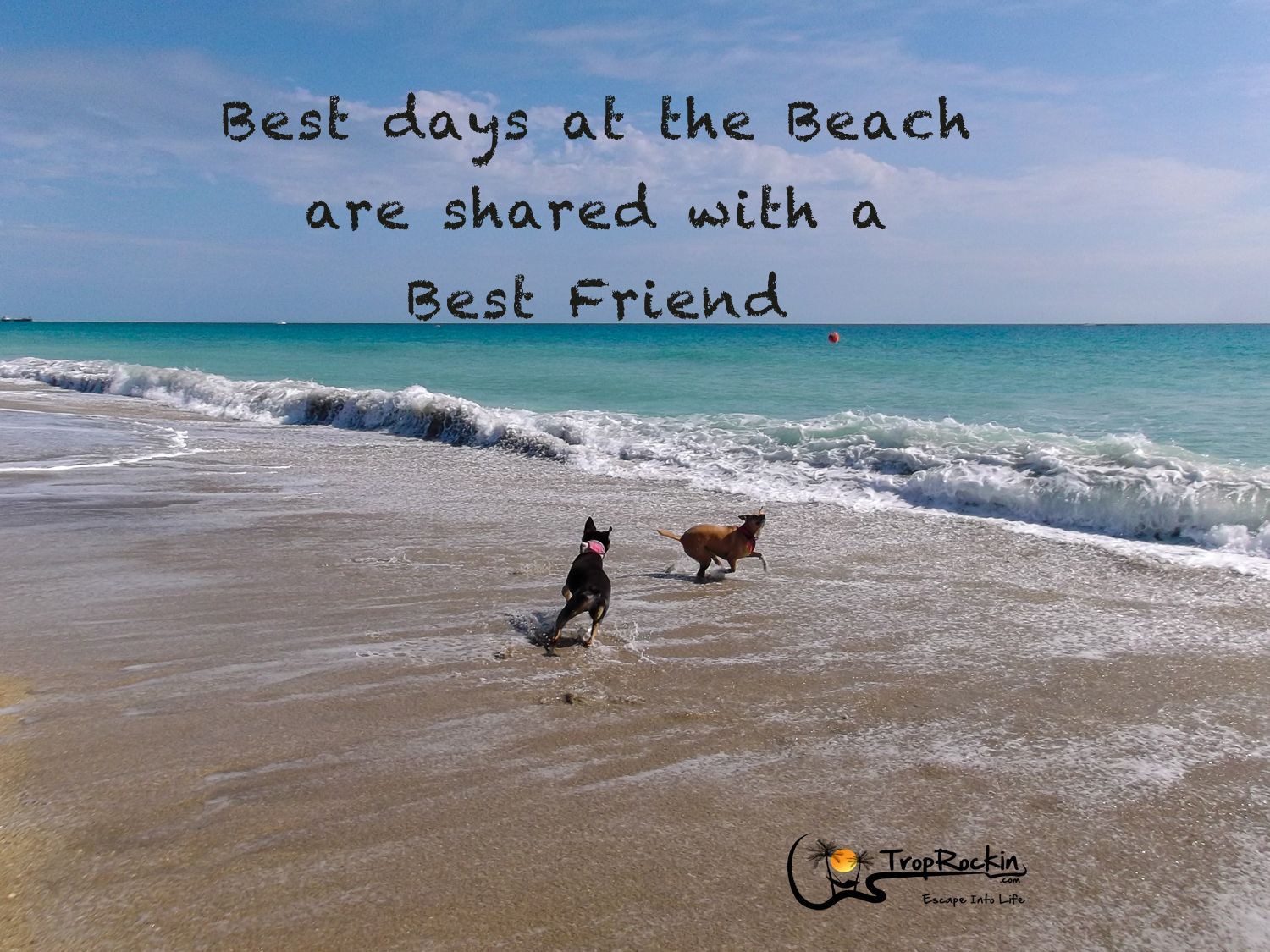 Best days at the Beach are shared with a Best Friend. Beach Quote