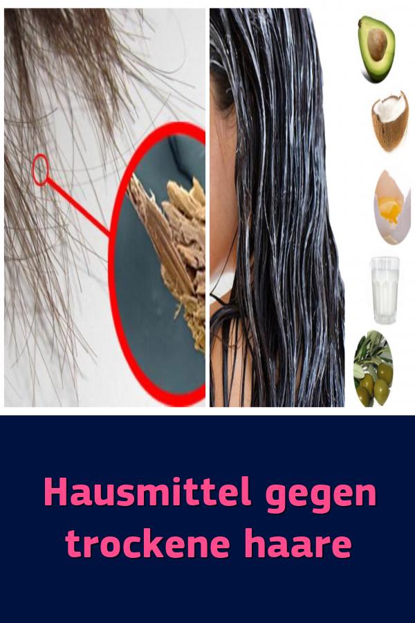 Hausmittel Gegen Trockene Haare Schönheitstipps