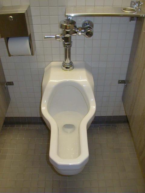 Ladies Bathroom: The Women's Urinals Of Texas A&M University