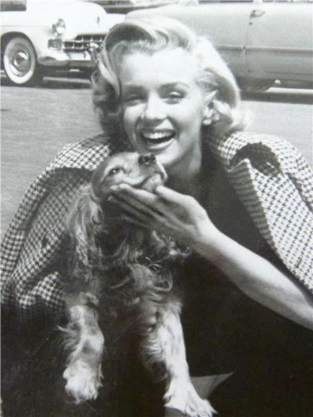 Photo of Bei 168, war Marilyn IQ signifikant höher als John F. Kennedy 129. (Ein Wert vo…