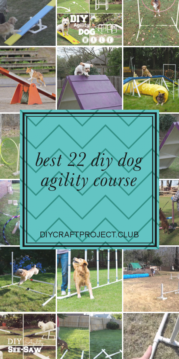 Some collection of ideas about Best 22 Diy Dog Agility ...