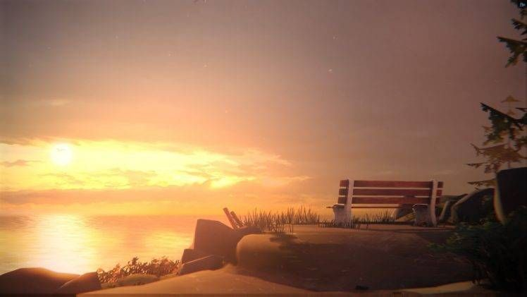 Life Is Strange Digital Art Bench Hd Wallpaper Life Is Strange Wallpaper Life Is Strange Arcadia Bay