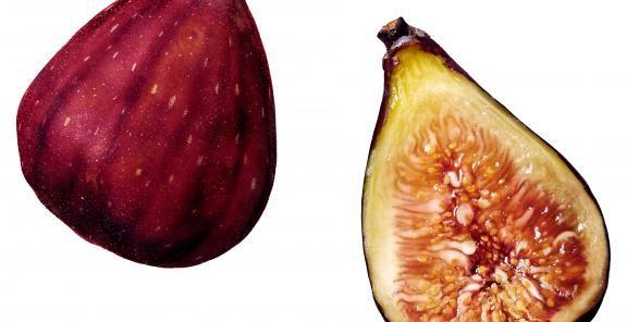 8 Fantastic Fig Recipes | KitchenDaily.com