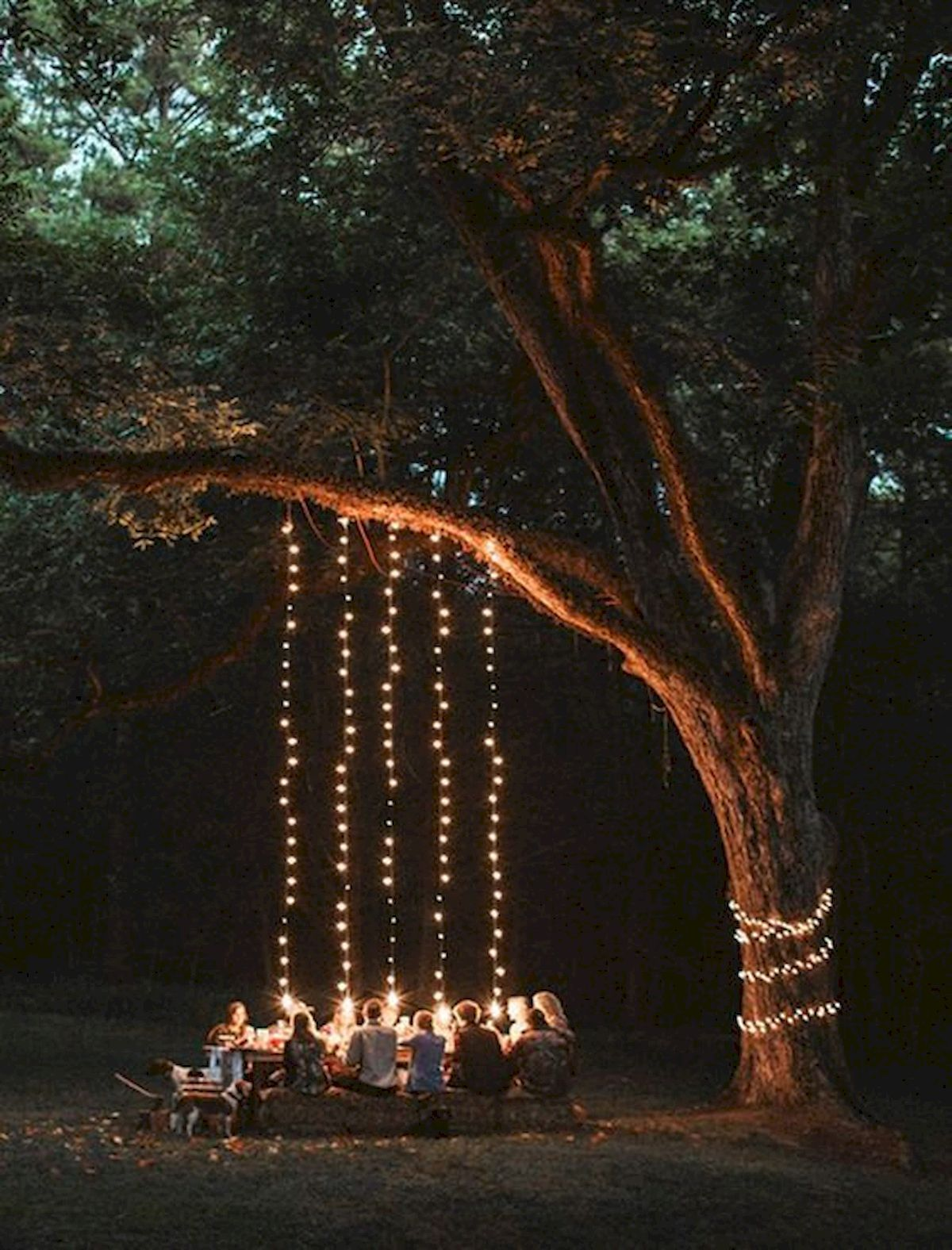Pin By Mitzi Kenney On Photography Outdoor Outdoor Dinner Garden Party