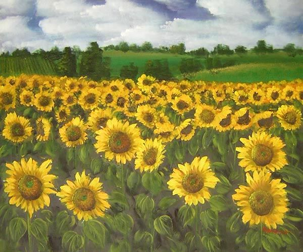 100 Handmade Museum Quality Sunflower Oil Painting Sunflower Painting Flower Art Painting Oil Painting For Sale