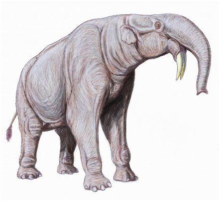 Deinoterium Animales De La Prehistoria Animales Prehistóricos Animales Extintos