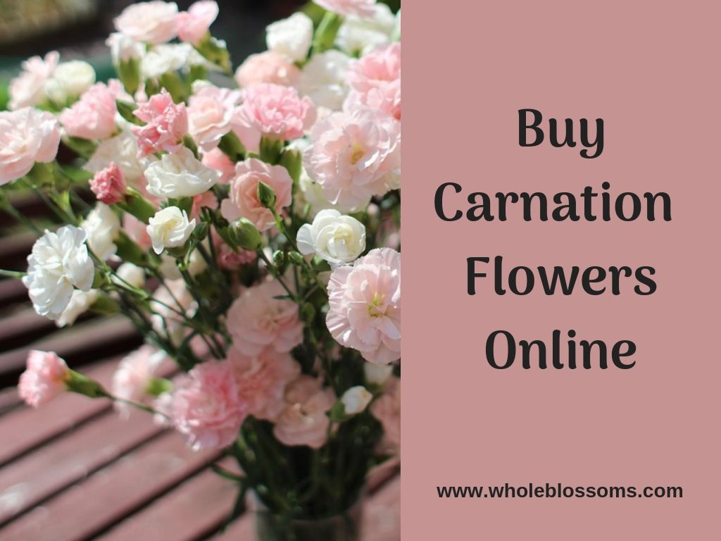Use Carnation Flowers To Your Decorations Carnations Carnation Flower Gorgeous Wedding Bouquet