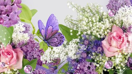 Purple and pink roses wallpaper roses lily of the for Lilac butterfly wallpaper