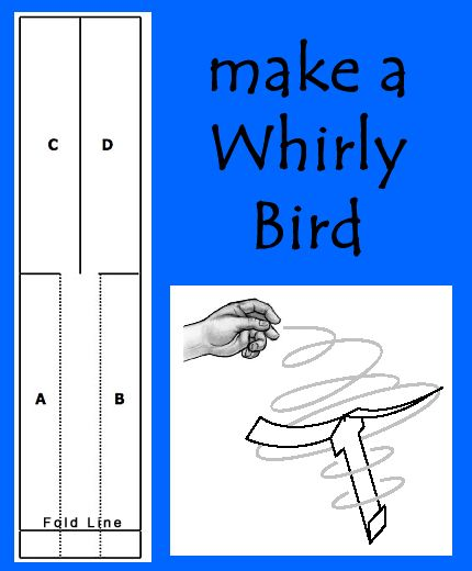 Make A Whirlybird From Paper Paper Helicopter Template Birds