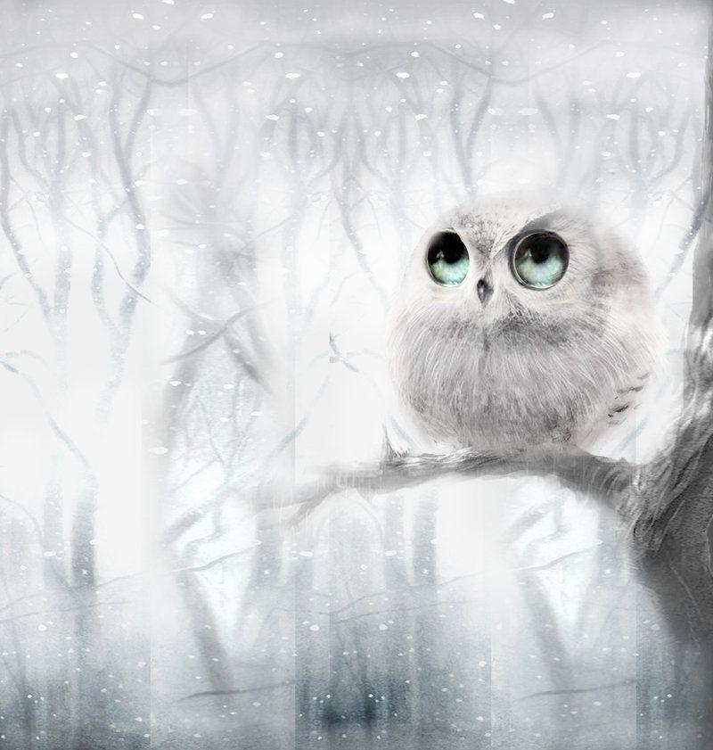 Google Image Result for http://fc04.deviantart.net/fs71/i/2011/360/5/0/white_owl_by_janaalus-d4kaglp.jpg