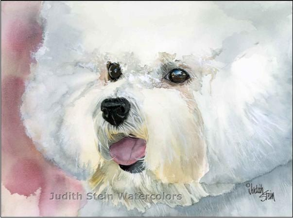 I love this Bichon Frise painting! (check out the website
